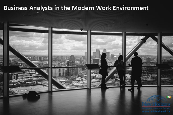 The importance of Business Analysts in the modern work environment
